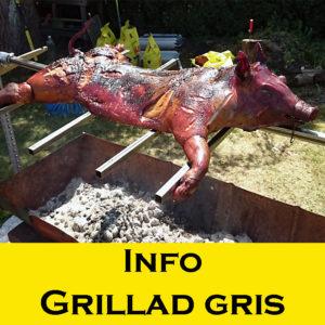 info grillad gris